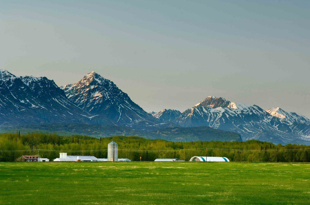 Extensive farming activities lie within miles of the proposed mines in the Matanuska Valley. Photo by Tim Leach, courtesy of Mat Valley Coalition.