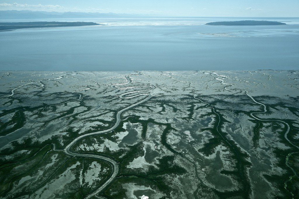 Chuitna River drains into upper Cook Inlet where salmon populations are dropping. Photo courtesy of Alaskans First.