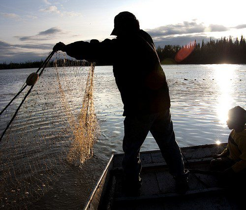Will Alaska Supreme Court let Alaskans vote on how the state protects fish?