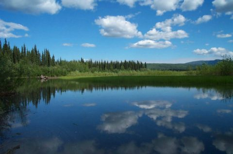 Waterway in the Yukon-Charley Rivers National Preserve. USFWS photo.