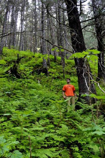 Christian Tucker on a hike out of Seward, Alaska.