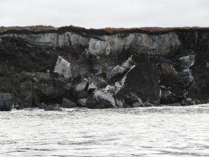 An underground basal glacier spills out of the tundra into the Beaufort Sea. Photo by Vicki Clark.