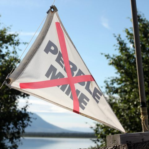 Photo of no Pebble mine flag