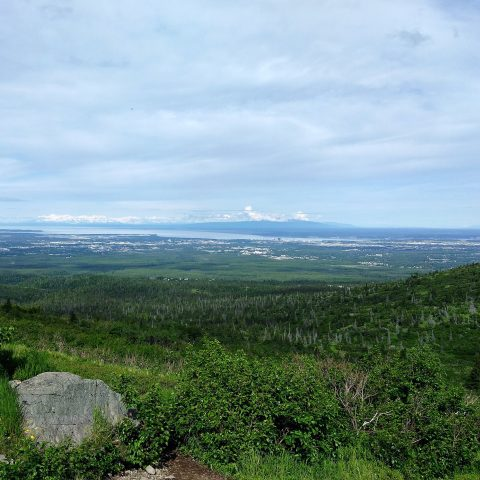 A view of Anchorage from the Wolverine Peak trail.