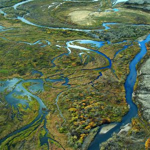 We should speak out for Alaska and Bristol Bay. This image of the watershed shows it's vitality.