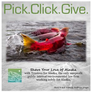 Make more of your PFD by helping us use the law to protect Alaska's lands, waters, wildlife and people.
