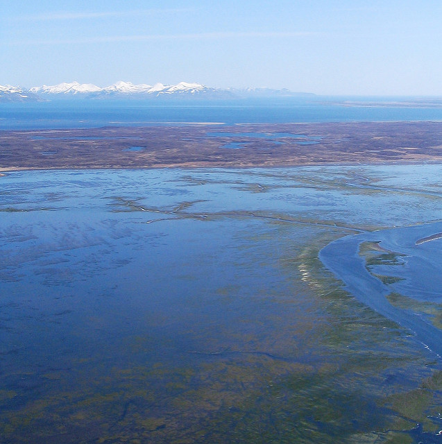 The Izembek isthmus is a narrow wetland area that makes up the heart of the refuge.