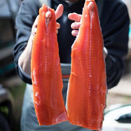 Vote for salmon Nov. 6