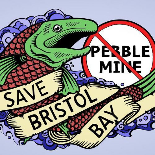 Pebble's big fish story