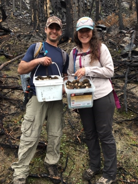 Brook collects mushrooms with Josh in 2020, 10 years after she started with Trustees.